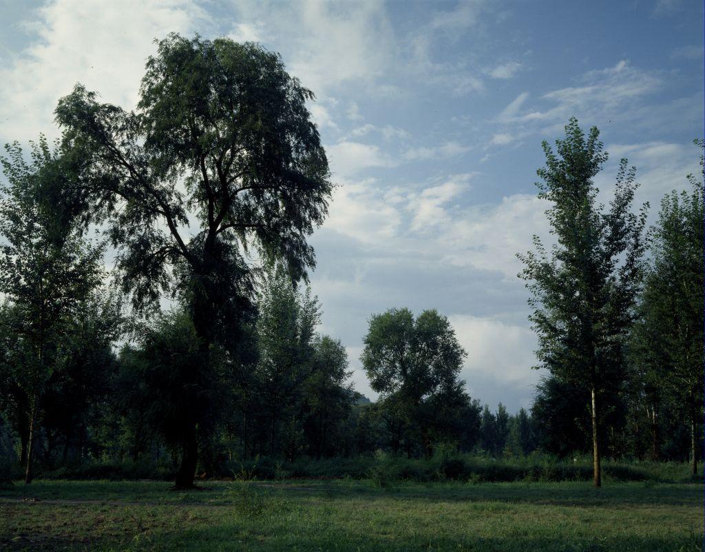 今日的避暑山庄万树园